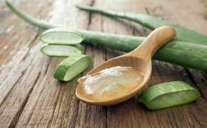Aloe vera plant with gel in spoon.