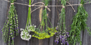 Flowers hanging on a wall.