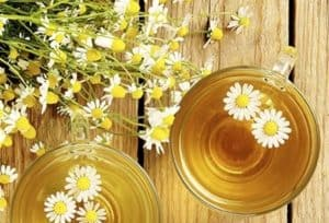 Two glass mugs of tea surrounded by chamomile flowers.