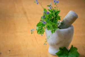 Mortar and pestle with flowers inside.