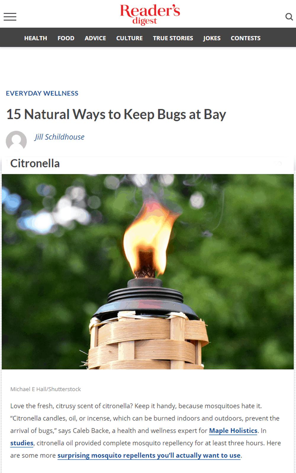 keep bugs at bay
