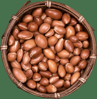 Argan nuts in a bowl.