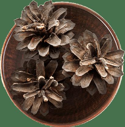 Cedarwood in a bowl.