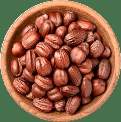 Jojoba seeds in a bowl.