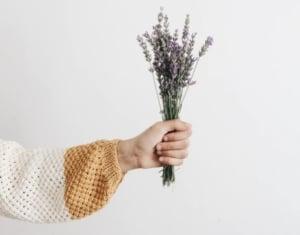 Hand holding lavender bouquet.